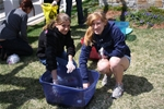 Lasell Celebrates Earth Day